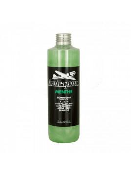 Shampoing tonique menthe Hairgum